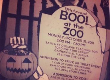 A halloween in Gainesville